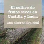 """CBH en la jornada """"El cultivo de frutos secos en Castilla y León: Una alternativa real"""""""