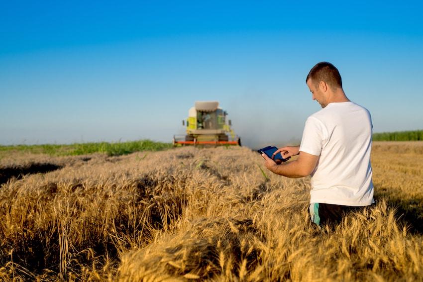 10 razones por las que es rentable invertir en el sector agrícola