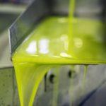 Precio del aceite de oliva lampante