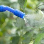 ¿Qué son los productos fitosanitarios y para qué se utilizan?